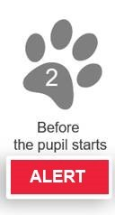 Stage 2 - Alert: Before the pupil starts: